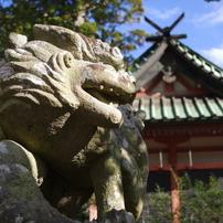 狛犬_筑波山神社