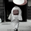 Oilpaper Umbrella