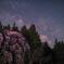 春の夜の夢-2