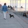 海の遊歩道