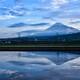 水田の逆さ富士