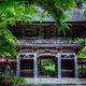 新緑の大矢田神社Ⅰ