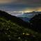 夜景の煌めきとヒメボタル
