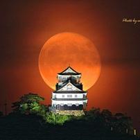 岐阜城に赤い月