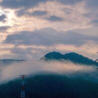 朝霧と送電線