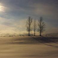冬の陽を浴びて…