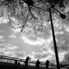 原宿の陸橋