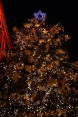 星のなる木