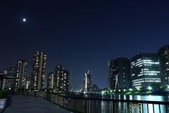 越中島公園 夜景