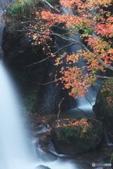 竜頭の滝_03