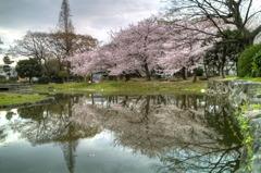 住吉公園6