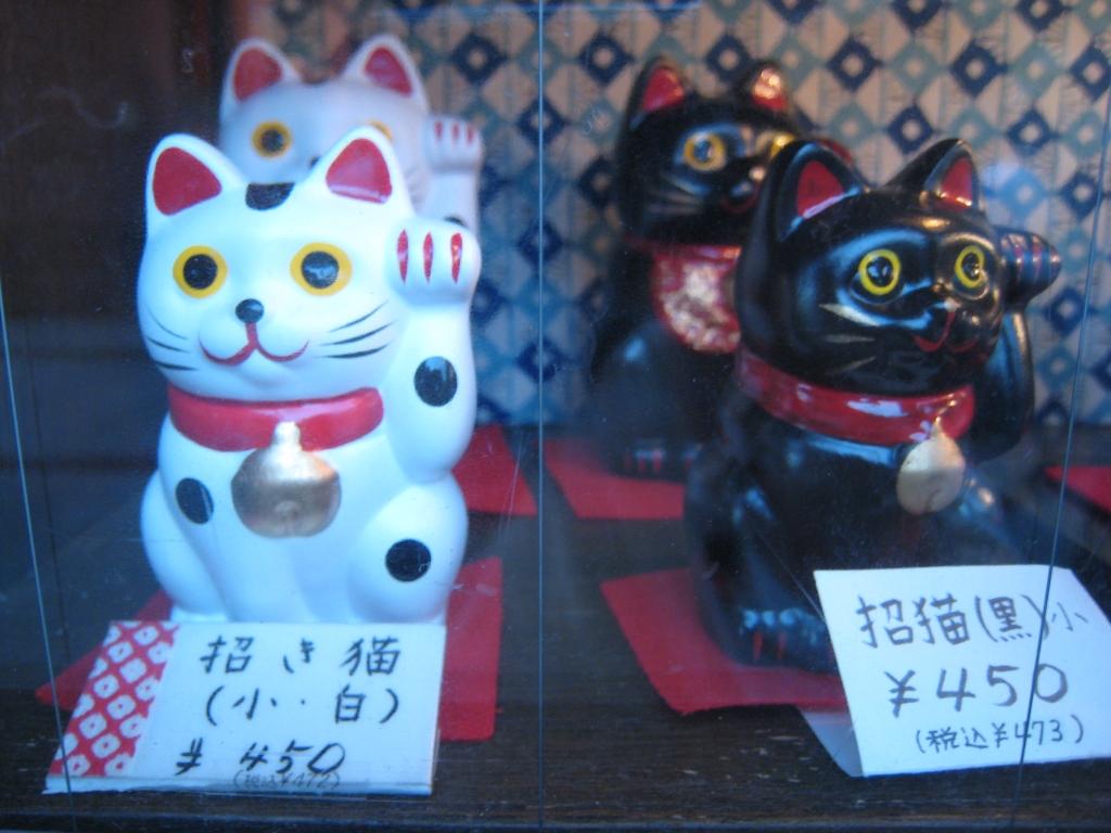 浅草のネコ