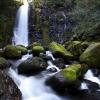 白糸の滝(熊本県西原村) IMG_1502m