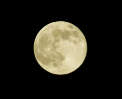 月 (20071026-2)