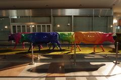 Reinbow Cow
