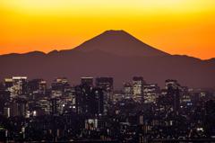 夕景富士と高層ビル群