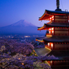 富士山と新倉山浅間公園の夜桜