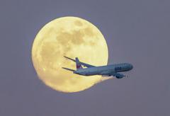 月光の世界