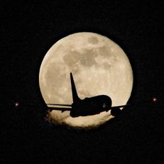 令和の月丼