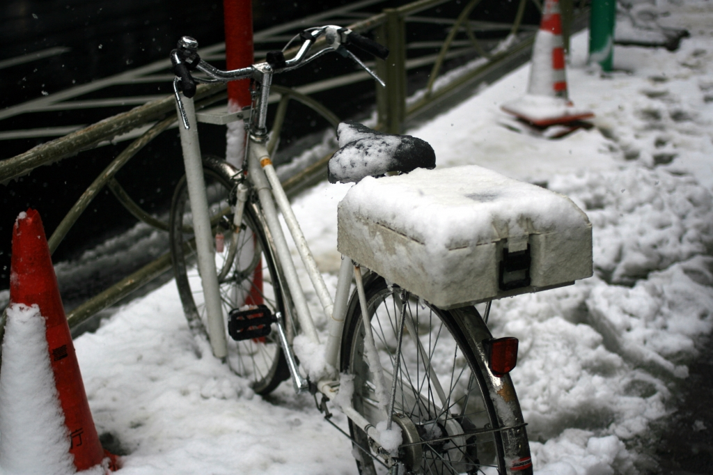 笹塚交番の自転車-2008年02月03日-