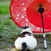 傘と…猫の箸置きかな?