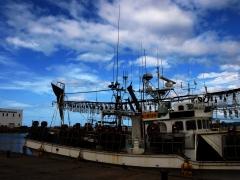 夜に働く漁船