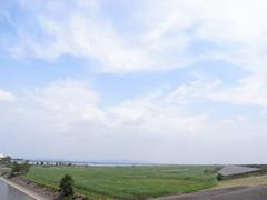 渡良瀬遊水池