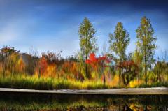 Monet IV