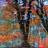 Monet III