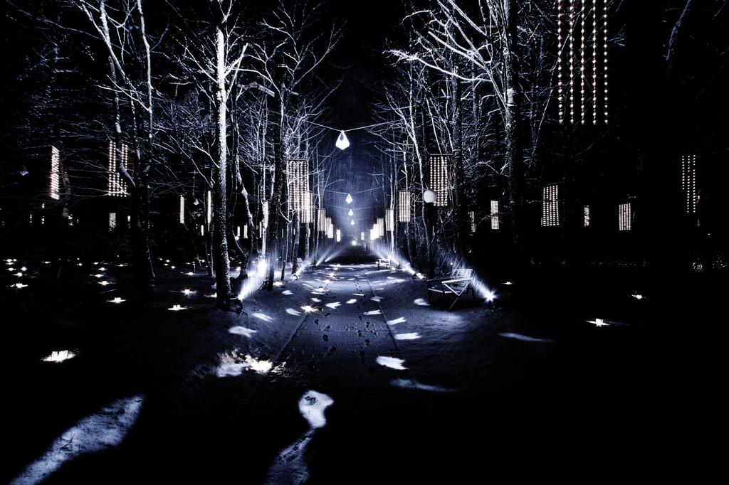 Road of lights