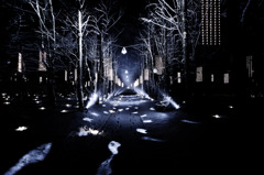 Road of lights
