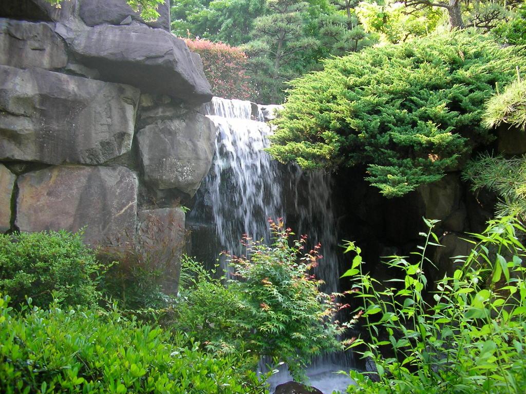 滝のある庭園