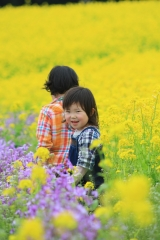 花さじき3