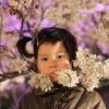 夜桜と長女
