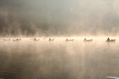 朝霧の精進湖