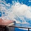 EPSON水族館 EOS 30D+LensBaby3G