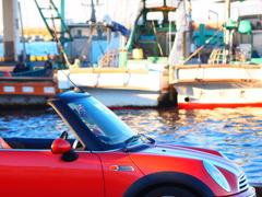 MINIの散歩・「富津漁港」