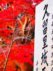 久留里城の紅葉