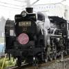 秩父鉄道 SL さくら号(2008)