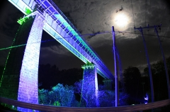 夜を飾る一橋
