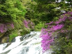 日光竜頭の滝