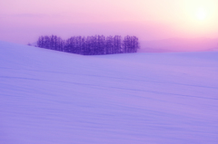 静寂の大地