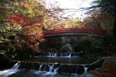 橋・水・紅葉