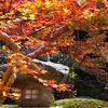 紅葉と灯篭