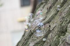 bubble×ココロ