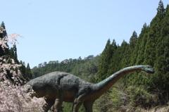 恐竜さんは花より団子みたいです