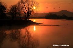 早春の江津湖