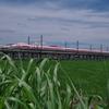 初夏の田圃を行く500系ハローキティ新幹線