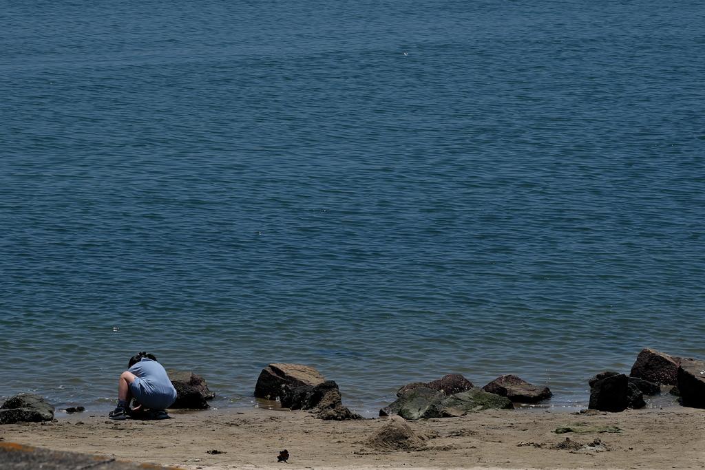 海に遊ぶ(少女)