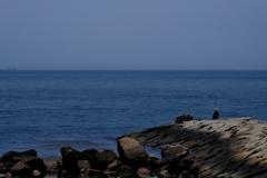 播磨灘の釣り人2